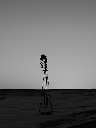 Solitude Enduring the Winds of Change B&W